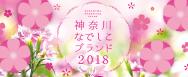 神奈川なでしこブランド2018